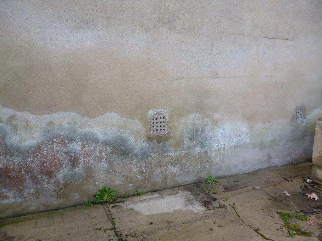 Humidité Dans Une Maison thmp – traitement de l'humidité midi pyrénées